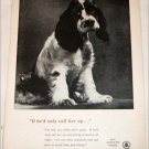 1956 Bell Telephone Puppy ad