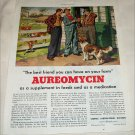 1952 Aureomycin ad