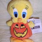 Warner Brothers Pumpkin Tweetie