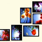 """Flowers"" custom wall collage (6 framed pieces)"