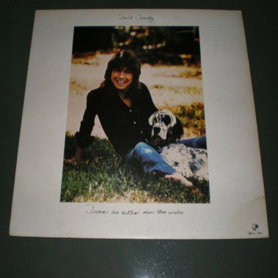 DAVID CASSIDY : Dreams are nuthin' more than wishes ( US Pop Rock Vinyl Record LP )