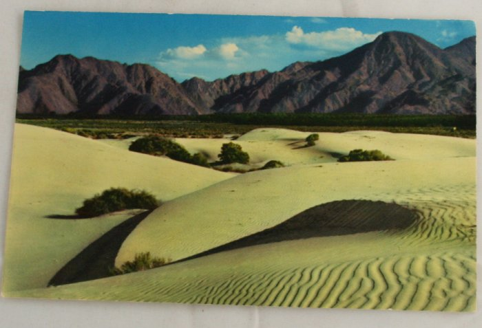 """Sand Dunes"" VINTAGE POSTCARD Palm Springs  California"