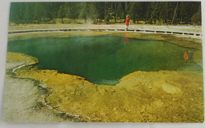 """Emerald Pool"" 50s VINTAGE POSTCARD Yellowstone"