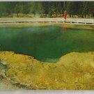 """Emerald Pool"" 50s VINTAGE POSTCARD Yellowstone"