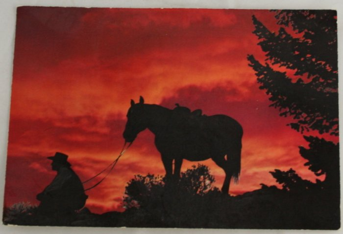 """Western Sunset"" VINTAGE POSTCARD Western United States"