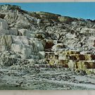 """Minerva Terrace"" 50s VINTAGE POSTCARD Yellowstone"