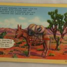 Linen Card-VINTAGE POSTCARD-Western-Burro