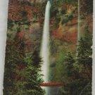 Hand Colored Postcard VINTAGE POSTCARD Yosemite 1917