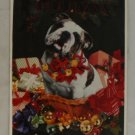 RPPC-Happy Holidays-Family Pet-Bulldog-1998