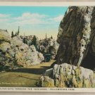 White Border-VINTAGE POSTCARD-Yellowstone-Silver Gate