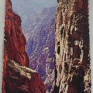 POSTCARD USA Colorado,Black Canyon of Gunnison River
