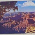 POSTCARD USA National Park, Grand Canyon National Park