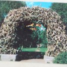 POSTCARD Wyoming,Jackson Hole,Jackson,Arch of Elk Horns