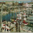 POSTCARD California,San Francisco, Fishing Fleet
