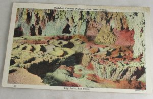 POSTCARD New Mexico,Carlsbad Caverns Curteich 46 Litho