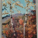 POSTCARD New Hampshire,White Mountains,Mt.Chocorua