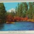 VINTAGE POSTCARD Oregon,Central Oregon,Mount Jefferson Chrome