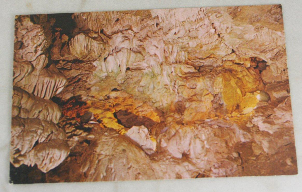 VINTAGE POSTCARD Oregon Caves Natl Monument,Garden