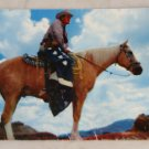 VINTAGE POSTCARD Cowboys,Western,The Texas Ranger