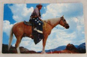 VINTAGE POSTCARD Cowboys,Western,The Texas Ranger
