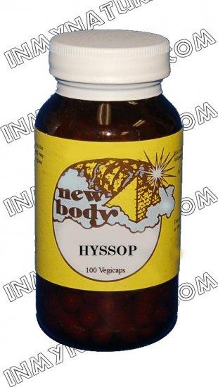 Hyssop (Hyssopus officinalis)