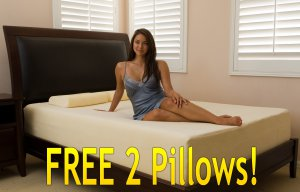 "10"" Deluxe Queen Memory Foam Mattress with FREE 2 Pillows!"