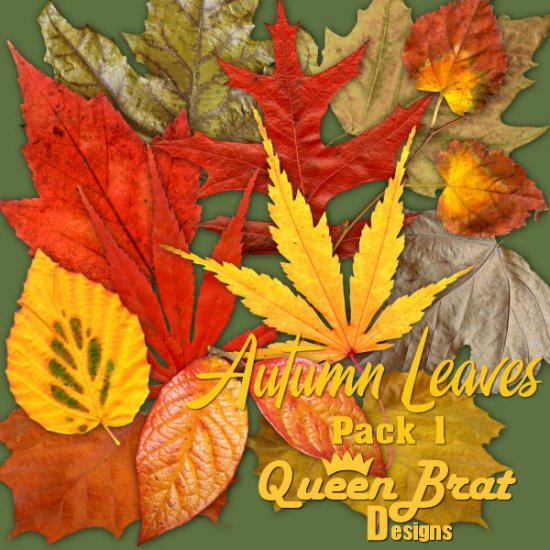 Autumn Leaves Pack 1