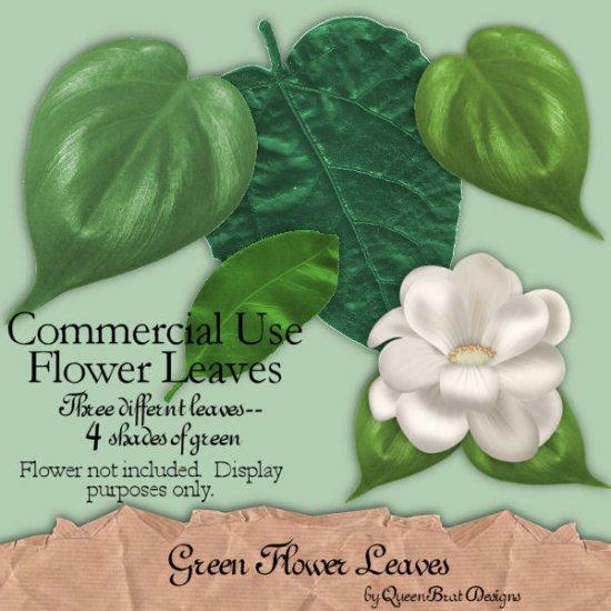 Green Flower Leaves