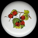 LADYBUGS on LEAVES ~ Ceramic Knobs Pulls