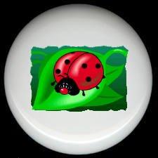 LADYBUG on a LEAF ~ Ceramic Knobs Pulls