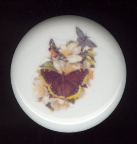 Victorian Butterfly 2 Ceramic Knob KNOBS