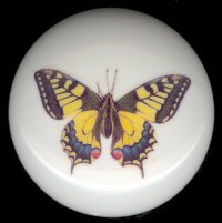 BEAUTIFUL BUTTERFLY 3 Ceramic Knob KNOBS