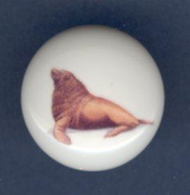 SEA LION Ceramic Knob KNOBS