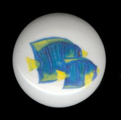 TROPICAL FISH #2 Ceramic Knob KNOBS