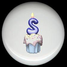CUPCAKE CANDLE Alphabet LETTER S ~ Ceramic Drawer Knobs Pulls