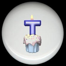 CUPCAKE CANDLE Alphabet LETTER T ~ Ceramic Drawer Knobs Pulls