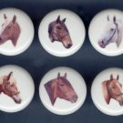 Set of 6 DRAFT HORSES Ceramic Knobs Pulls - Free Shipping