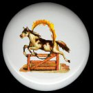 Victorian HORSE Jumping Through FLAMING HOOP Ceramic Knobs Handles Pulls - Free Shipping
