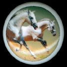 WHITE HORSES Running Equine Horse Ceramic Knobs Handles Pulls - Free Shipping