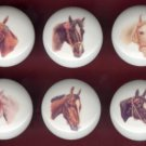 VINTAGE Illustration HORSE Horses Ceramic Drawer Cabinet Knobs Pulls ~ Set of 6
