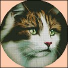 CAT PORTRAIT cross stitch pattern