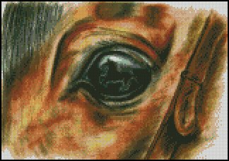Horse EYE WATCHING YOU cross stitch pattern