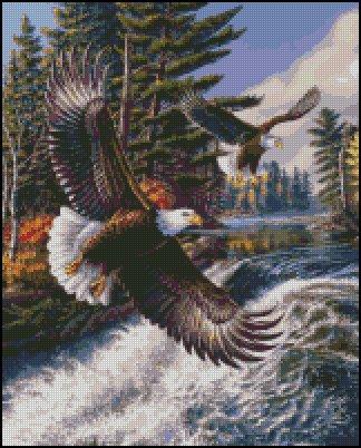 EAGLES WHITE WATER cross stitch pattern