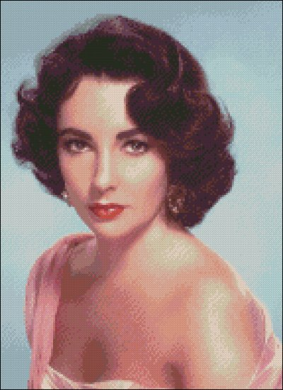 ELIZABETH TAYLOR cross stitch pattern