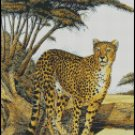 CHEETAH GAZING cross stitch pattern