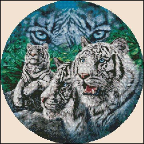 TIGER'S EYES cross stitch pattern