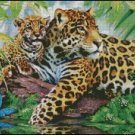 JAGUARS cross stitch chart