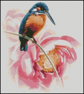 HUMMINGBIRD cross stitch pattern