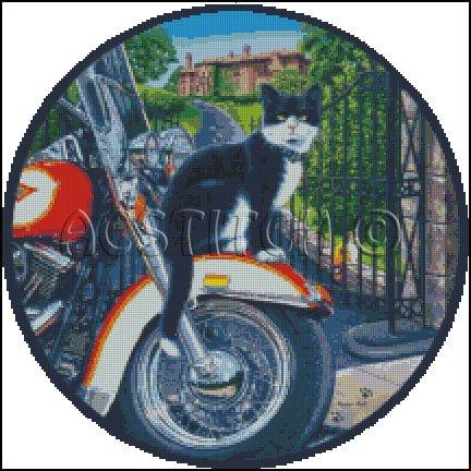COOL CAT cross stitch pattern