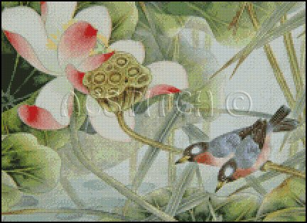 BIRDS AND FLOWERS cross stitch pattern